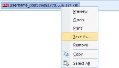Soft Token Instructions - Windows Users
